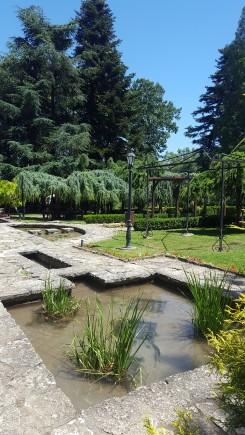 Interior Grădina Botanică
